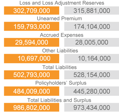 Liabilities and Surplus (2018 vs. 2017)